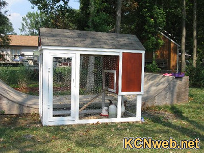 http://www.chickencoopsruns.org/chicken-coop-for-three-chickens